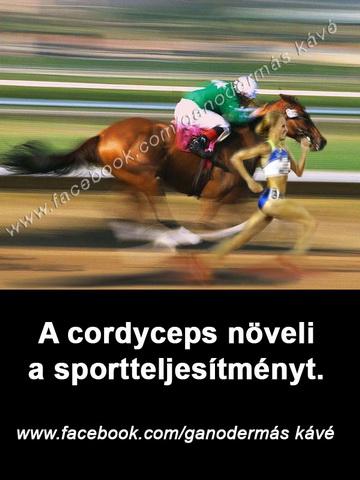 fb_cordyceps_2a_átméretezve
