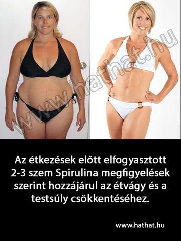 fb_spirulina-fogy_átméretezve