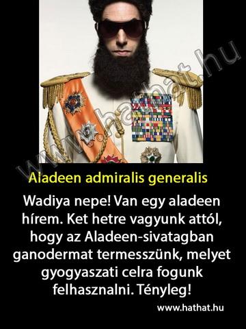 Aladeen