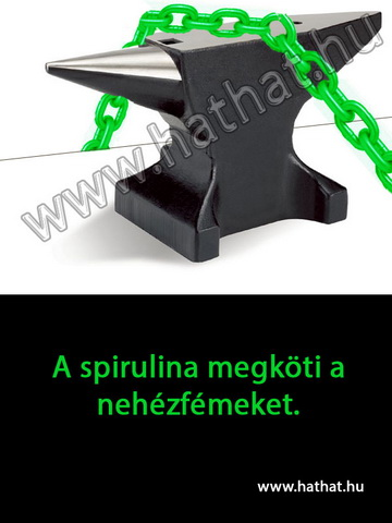 A spirulina megköti a nehézfémeket