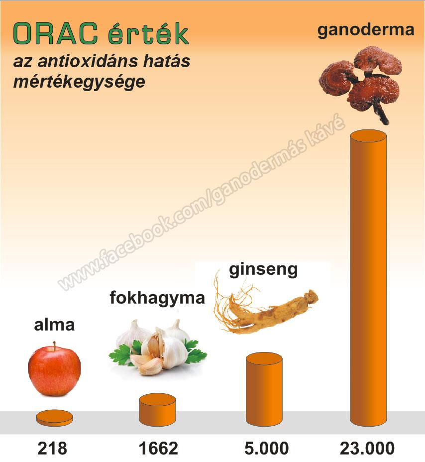 Az immunrendszer erősítés szerepe
