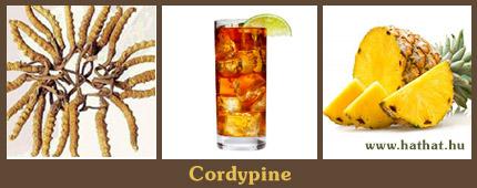 Cordypine, élő enzim tartalmú fermentált ananász ital, hernyógomba kivonattal.
